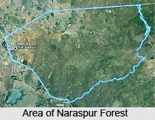 Narsapur, West Godavari, Andhara Pradesh