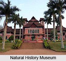 Natural History Museum, Thruvananthapuram, Kerala