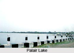 Palair Lake, Khammam District, Telangana