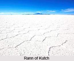 Rann of Kutch Seasonal Salt Marsh in India