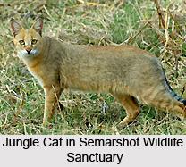 Semarshot Wildlife Sanctuary