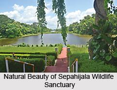 Sepahijala Wildlife Sanctuary, Tripura