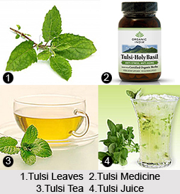 Treatment by Tulsi