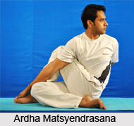 Yoga for Obesity, Yoga and Health