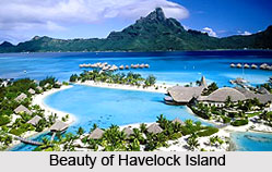 Havelock Island, Andaman Island