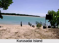 Kurusadai Islands, Tamil Nadu