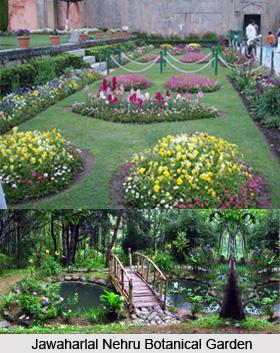 Jawaharlal Nehru Botanical Garden, Rumtek, Sikkim