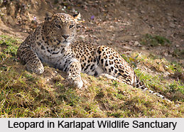 Karlapat Wildlife Sanctuary, Orissa