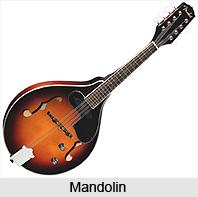 Mandolin, String Instrument
