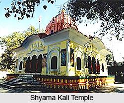 Shyama Kali Temple, Mandi