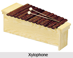 Xylophone, Percussion Musical Instruments