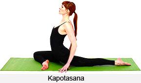 Kapotasana, Yoga Asanas
