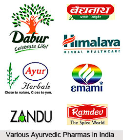 Ayurvedic Pharmas in India