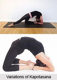 kapotasana yoga asanas