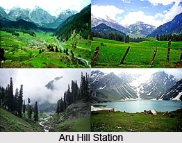 Aru, Anantnag District, Jammu and Kashmir