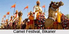 Camel Festival, Bikaner, Rajasthan