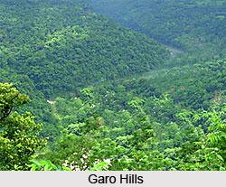 Garo language, Indian Tribal Language