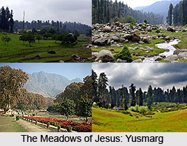Yusmarg, Jammu and Kashmir