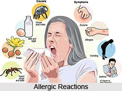 Allergen, Causes of Allergies