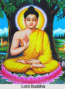 Decline Of Buddhism In India