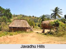Javadhu Hills, Tiruvannamalai District, Tamil Nadu