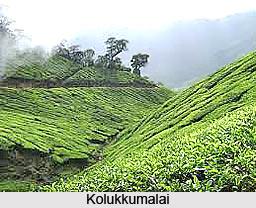 Kolukkumalai, Tamil Nadu