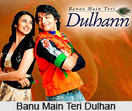 Banu Main Teri Dulhan, TV Serial