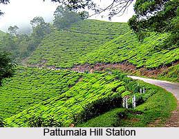 Pattumala Hills, Idukki, Kerala