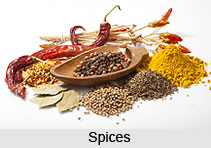 Ingredients of Indian Food