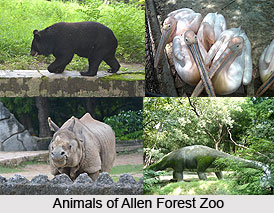 Allen Forest Zoo, Kanpur, India