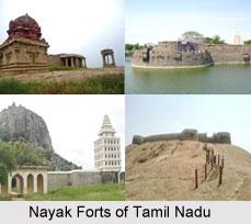 Nayak Forts of Tamil Nadu