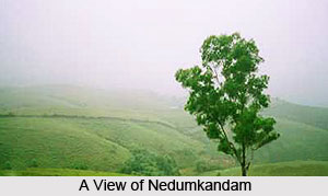 Nedumkandam, Idukki District, Kerala