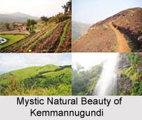 Tourism in Kemmannugundi