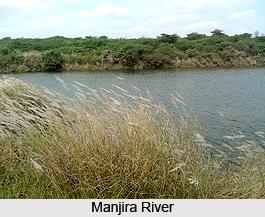 Manjira River, Indian River