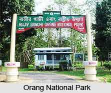 Orang National Park, Assam