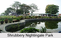 Shrubbery Nightingale Park, Darjeeling District, West Bengal