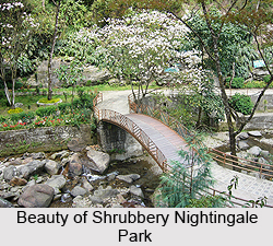 Shrubbery Nightingale Park, Darjeeling District, West Bengal