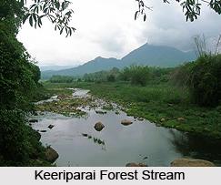 Vattaparai Falls, Tamil Nadu