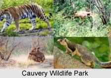Cauvery Wildlife Park, Karnataka