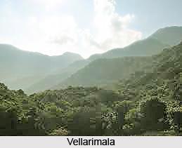 Vellarimala, Wayanad District, Kerala