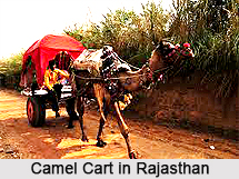 Transport in Rajasthan