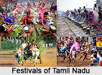 Culture of Tamil Nadu