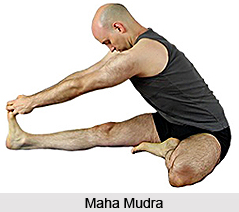 Mudras in Hatha Yoga