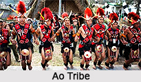 Ao Naga Tribe, Nagaland
