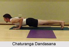 Chaturanga Dandasana, Yoga Asana