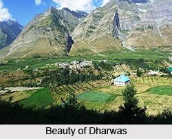 Dharwas, Chamba District, Himachal Pradesh