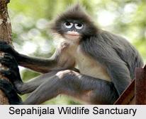 Flora and fauna in Tripura