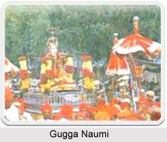 Gugga Naumi, Indian Festival