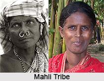 Mahli Tribe, West Bengal