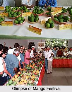 Mango Festival, Indian Festival